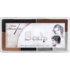 Палитра спирторастворимых красок для волос Scalp